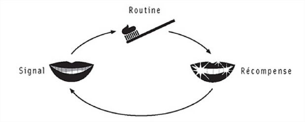 la routine qui devient habitude
