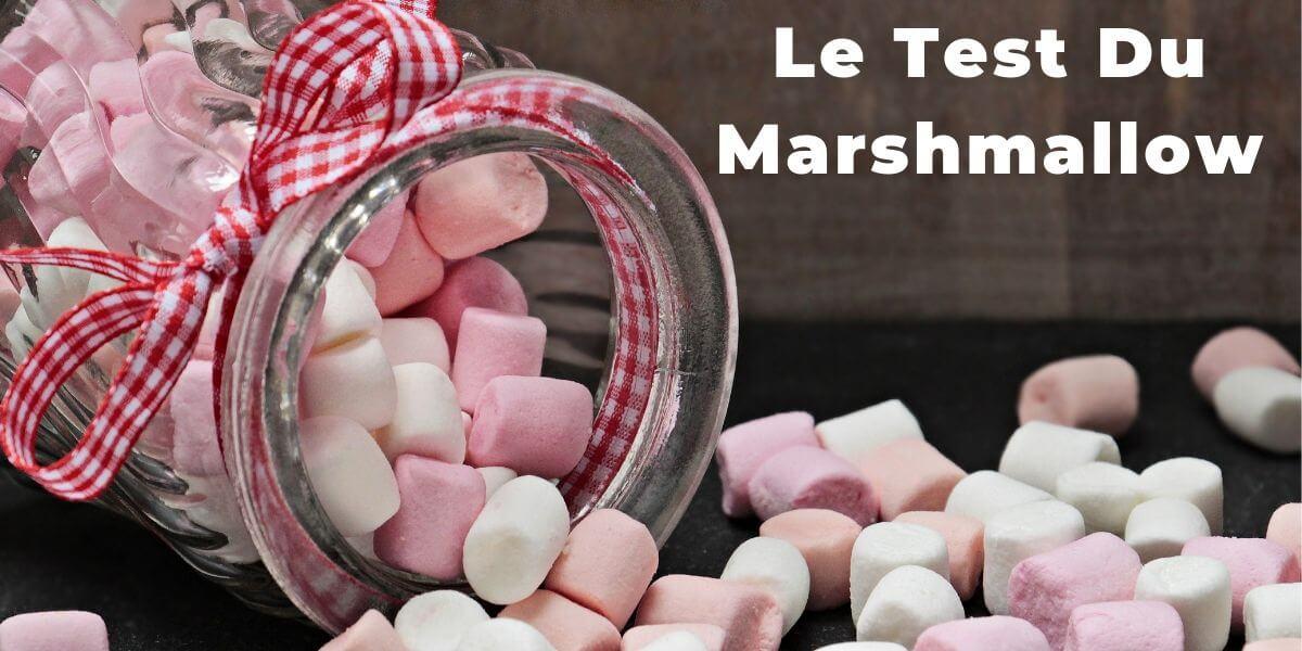 Le test du marshmallow, l'enfant et la gratification