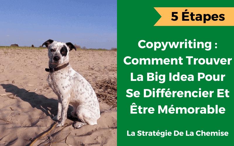 la big idea ou la grande idée en copywriting